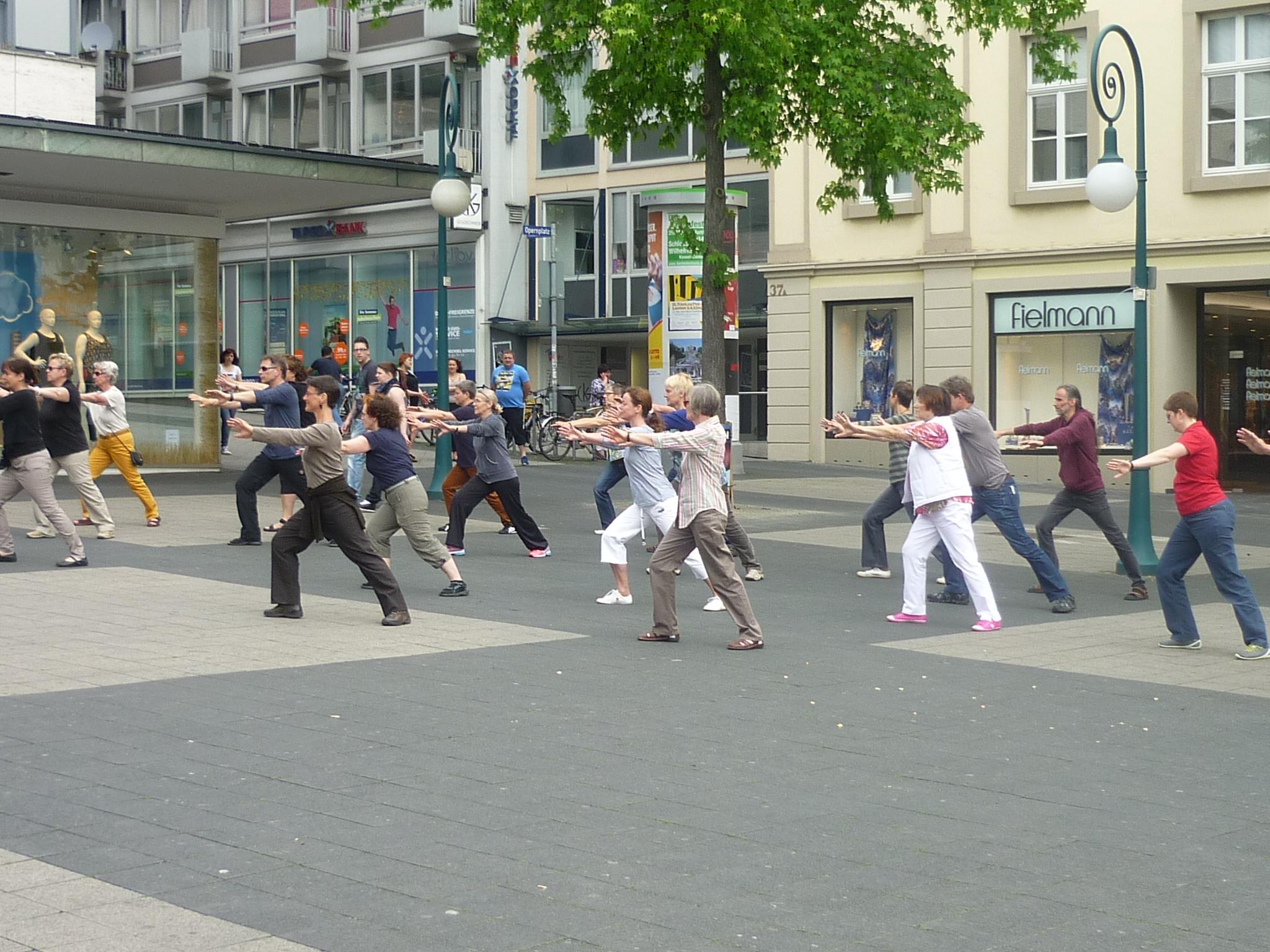 Dynamo Windrad Kassel